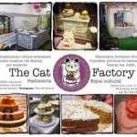 Tarda a The Cat Factory (dissabte 7 de desembre)