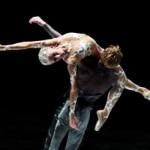 Les Ballets de Monte-Carlo: La Belle (13, 15 (2 funcions) i 16 de febrer de 2014) Gran Teatre del Liceu