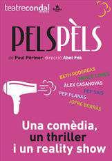 PELS_PELS_V01