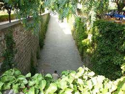 jardinsssssssssssssss