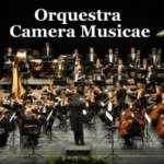 3a temporada de l'Orquestra Camera Musicae al Palau de la Música Catalana ( del 28 de març al 16 de juliol)