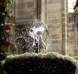 lou_com_balla_claustre_de_la_catedral-barcelona