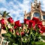 Us deixem algunes propostes per gaudir de la Diada de Sant Jordi a Barcelona