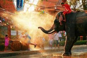 elefante_Songkran_restaurante_thai_gardens