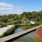 Jornada de portes obertes 'Planta't al Botànic!' 2 d'abril