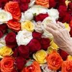 Festa del Roser (del 7 al 12 d´octubre)