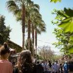 PALO ALTO MARKET DEDICA SU PRÓXIMA EDICIÓN A LOS AMANTES DEL STREET MARKET 2 y 3 de junio